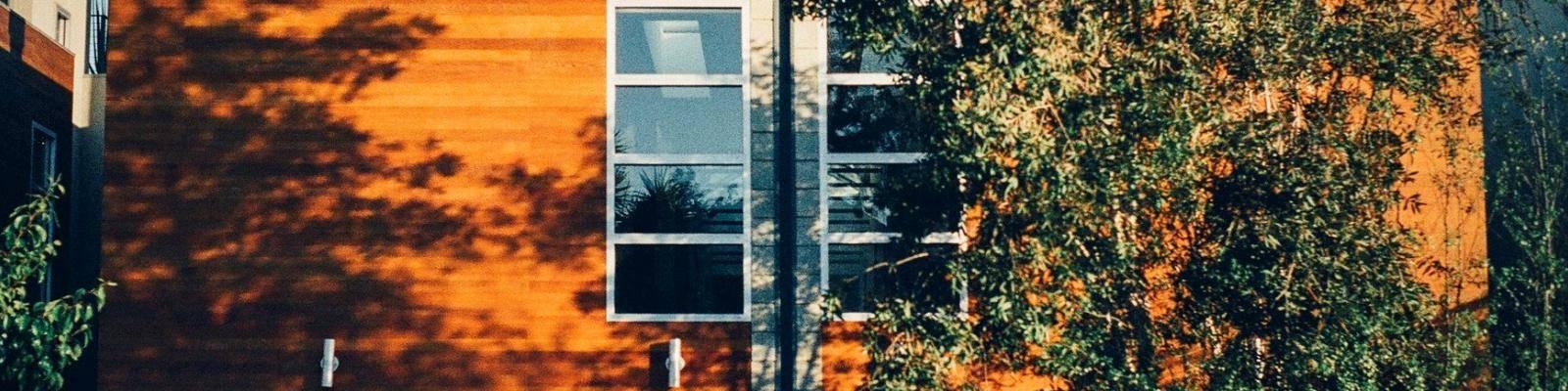 gevel huis met ramen en begroeiing