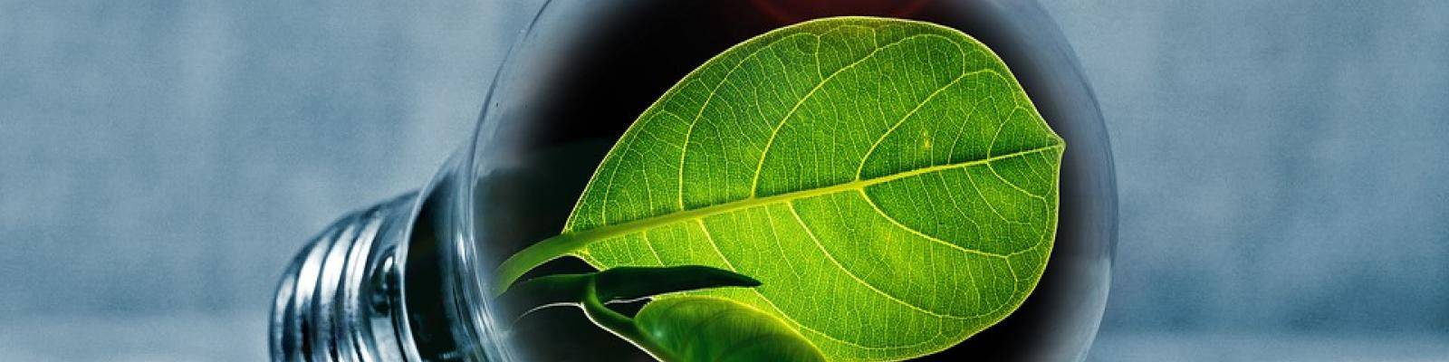 Ledlampen groene energie