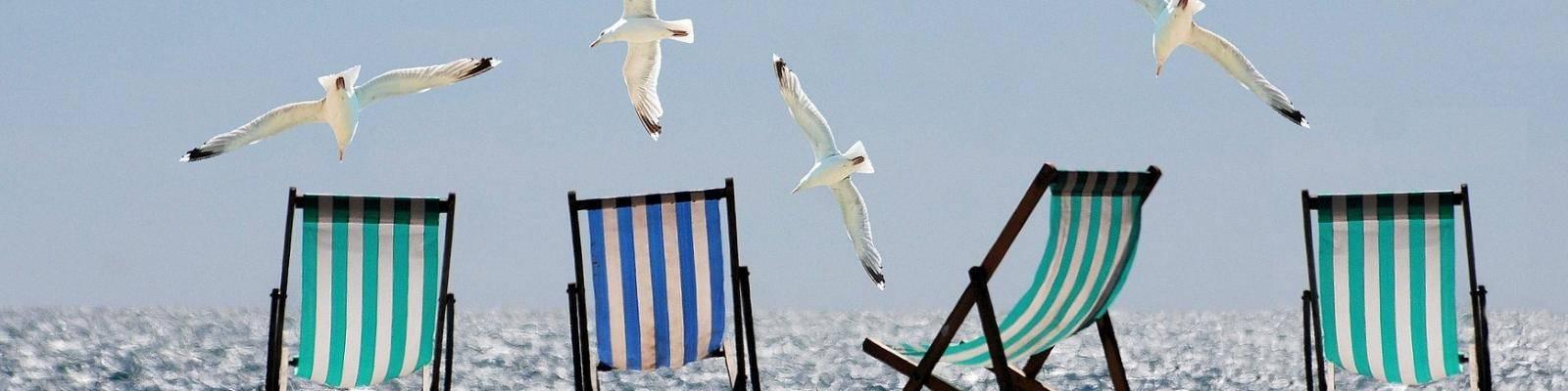 strandstoelen meeuwen en zee