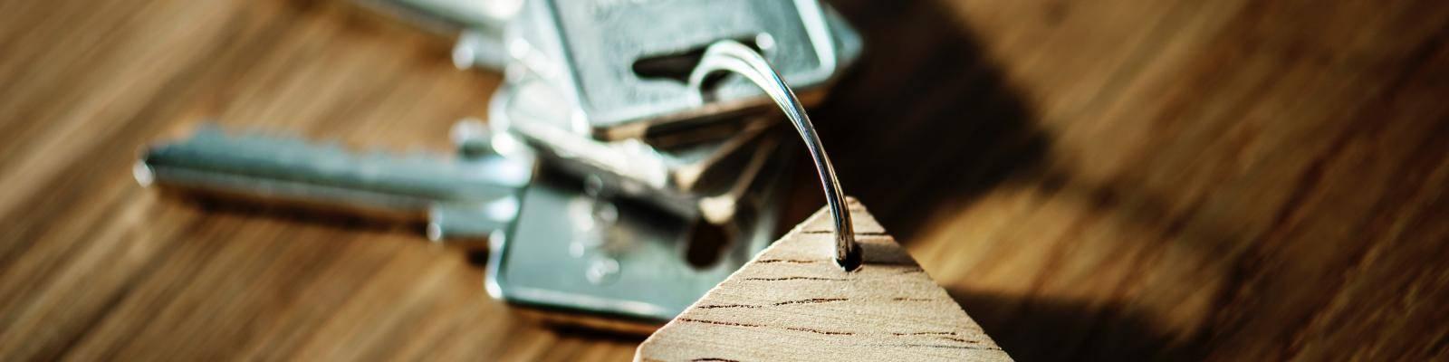 Sleutels met sleutelhanger huis